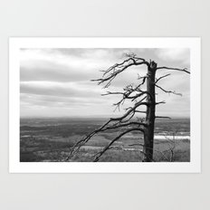 Good ol Nature Art Print