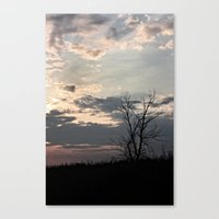 Dendrite Canvas Print