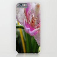 Orchid Mornings iPhone 6 Slim Case