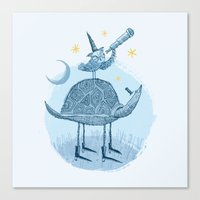 Tortoise & Owl Canvas Print