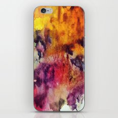 2/3 iPhone & iPod Skin
