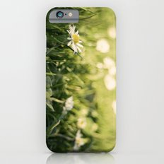 flower Margarita iPhone 6 Slim Case