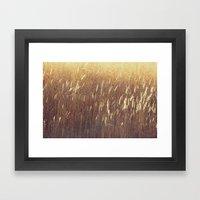 Amber waves No. 1 Framed Art Print