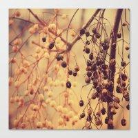 Autumn Life (II) Canvas Print
