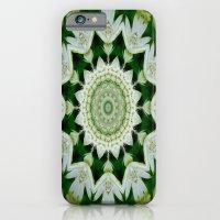 Astrantia Mandala iPhone 6 Slim Case