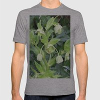 Lily of the Valley Mens Fitted Tee Athletic Grey SMALL