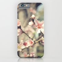 Untitled #2 iPhone 6 Slim Case