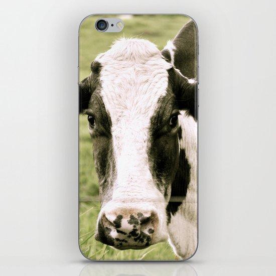 Cow iPhone & iPod Skin