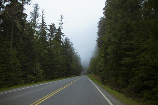 Misty Mountain Road Art Print