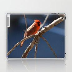 Cardinal Red Laptop & iPad Skin