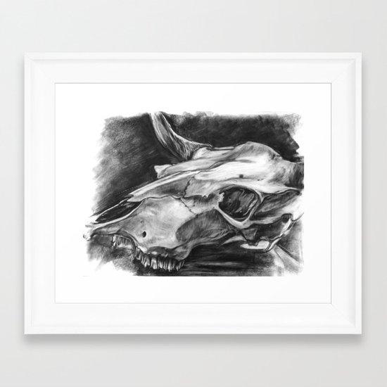 Texas Long Horn Framed Art Print