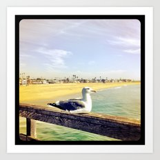 Lazy ass seagull. Art Print