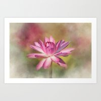 Blushing Pink Art Print