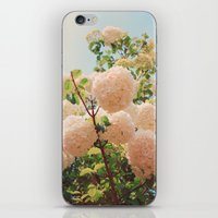 Puffy flowers! iPhone & iPod Skin