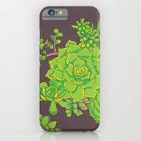 Succulent Pattern iPhone 6 Slim Case