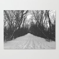 Paths Traveled Canvas Print
