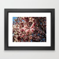 Partially Pink Framed Art Print