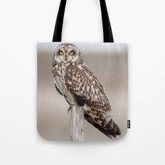 Short Eared Owl Tote Bag