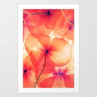 Photo flower Art Print