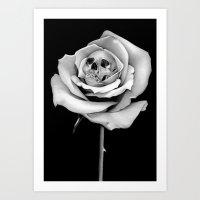 Beauty & Death Art Print