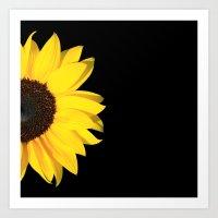 colored summer ~ sunflower black Art Print
