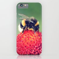 Bumble Bee on a Red Blossom iPhone 6 Slim Case