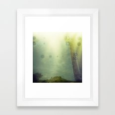 Holga Accident Framed Art Print