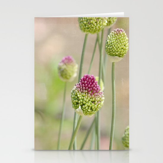 Pink Clovers Stationery Card