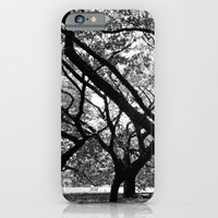 iPhone & iPod Case featuring Trees of Harajuku  by Ethna Gillespie