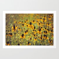 Yellow Hat Dance -- Dreamy Botanical Landscape Mexican Hat Coneflowers Afield Art Print