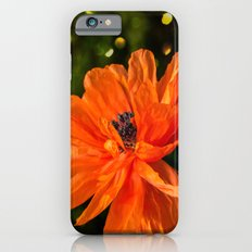 Orange Poppy Slim Case iPhone 6s
