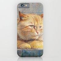 Ginger iPhone 6 Slim Case