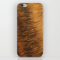 Brindle Fur iPhone & iPod Skin