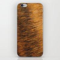 Brindle Fur iPhone & iPod Skin