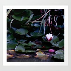 apple in the pond Art Print