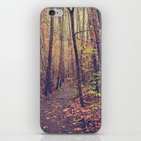 Fall Trail iPhone & iPod Skin