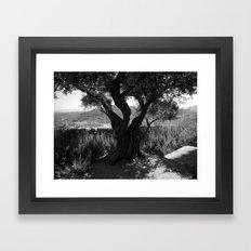 Essence Of Nature Framed Art Print