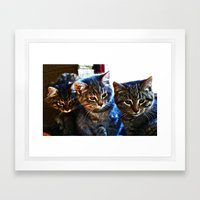 What's Over There? Framed Art Print