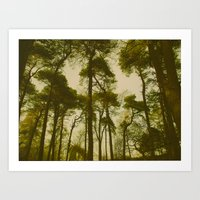 Creepy Trees Art Print