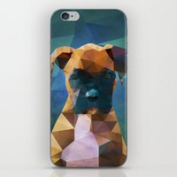 The Boxer - Dog Portrait iPhone & iPod Skin