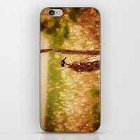 Bird Photography iPhone & iPod Skin