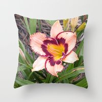Pink Daylily Growing In … Throw Pillow