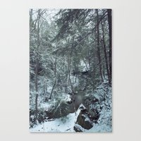 Hemlock Gorge Canvas Print