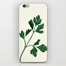 parsely iPhone & iPod Skin