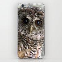 Chaco Owl iPhone & iPod Skin