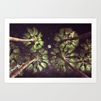 Elevated Paradise Art Print