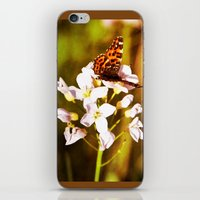 Gold Butterfly iPhone & iPod Skin