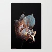 {artificial Beauty} Canvas Print