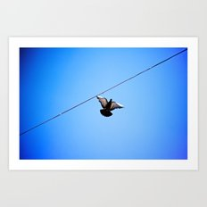 with wings wide open Art Print