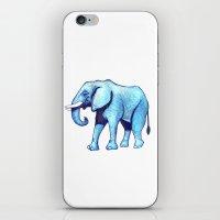 Elefante Blu iPhone & iPod Skin